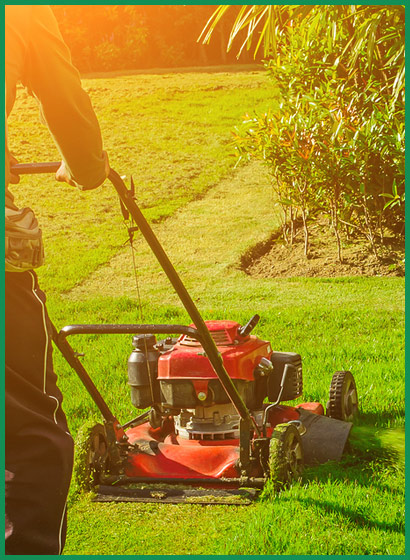 Lawnmower Servicing                               Specialists in Bridlington image